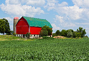 Barbara McMahon - Red Barn and Corn Field Against Summer Sky