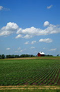 Cornfield Photos - Red Barn and Cornfield by Frank Romeo