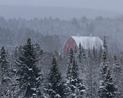 Red Barn In Winter Photos - Red Barn in Maine by Jack Zievis