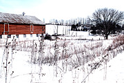 Red Barn In Winter Print by Gemblue Photography