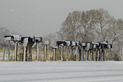 J L Woody Wooden - Red Barn Mailboxes