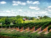 Wine Vineyard Digital Art Prints - Red Barn on Old Mission Peninsula Print by Michelle Calkins