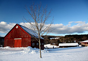 Jason Neely Acrylic Prints - Red Barn - Putney VT Acrylic Print by Jason Neely