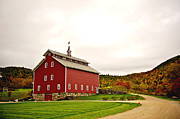Red Barn. New England Prints - Red Barn Print by Shirley Helton
