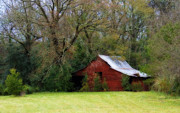 Barn Yard Photo Prints - Red Barn Print by Steven Richardson