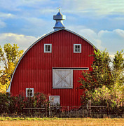 Red Barn Print by Sylvia Thornton