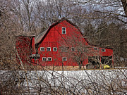 Red Barn. New England Prints - Red Barn through the trees Print by Mary Anne Williams