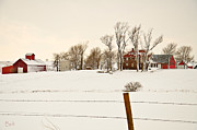 Nebraska. Posters - Red Barns in Winter Poster by Christine Belt