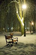 Red Bench In The Park Print by Jaroslaw Grudzinski