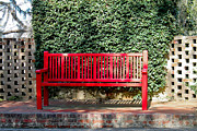 Park Benches Photos - Red Bench by Jessica Brown