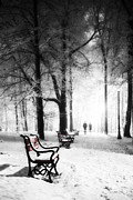 Winter Landscape. Snow Prints - Red benches in a park Print by Jaroslaw Grudzinski