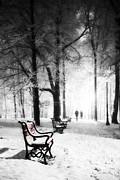 Red Benches In A Park Print by Jaroslaw Grudzinski