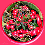 Chanda Henne Posters - Red Berries Poster by Chanda Henne