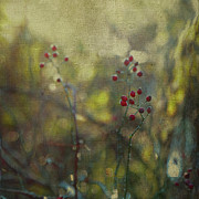 Brooke Ryan - Red Berries on Green...