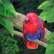 Forest Bird Paintings - Red Bird by Alice Leggett