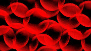 Andee Photography - Red Blood Cells