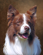 Collies Digital Art Posters - Red Border Collies Rule Poster by Laura Rothstein