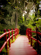 Trees Images Prints - Red Bridge in Southern Plantation Print by David Smith