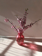 J R Baldini Master Photographer - Red bud and rose glass