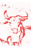 Bulls Painting Originals - Red Bull by Samuel Zylstra