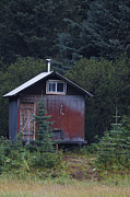 Countrylife Prints - Red Cabin in the Woods Lake Clark National Park Print by Jason O Watson