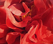 Deborah Smith - Red Camellia Abstract