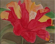 Camellia Paintings - Red Camillia by Carol Ann Johnson