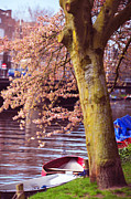 Spring Time Art - Red Canoe. Amsterdam Canals with Blooming Trees. Pink Spring in Amsterdam by Jenny Rainbow
