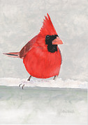 Red Bird In Snow Framed Prints - Red Cardinal Bird Print Framed Print by Cathy Savels