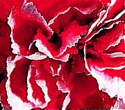 Dorlea Ho - Red Carnation
