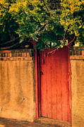 Steven Bateson - Red Chili Adobe Door