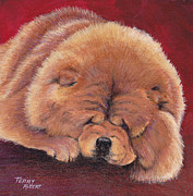 Terry Albert - Red Chow