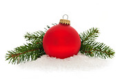 Pine Tree Posters - Red Christmas bauble Poster by Elena Elisseeva