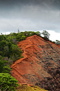 Red Cliff At Waimea Print by Christi Kraft