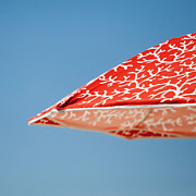 Art Block Collections - Red Coral Umbrella