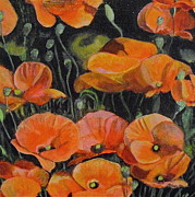 Melissa Torres Posters - Red Corn Poppies Poster by Melissa Torres