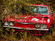 Dave Bosse - Red Corvair