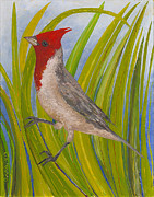 Tropical Glass Art Metal Prints - Red-crested Cardinal Metal Print by Anna Skaradzinska