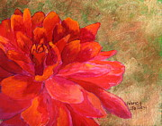 Nancy Jolley Art - Red Dahlia by Nancy Jolley
