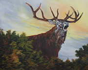 Jean Walker - Red Deer - Stag