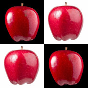 Bryan Freeman Metal Prints - Red Delicious Metal Print by Bryan Freeman