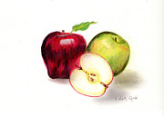 Apples Drawings Posters - Red Delicous and Granny Smith Poster by Linda Ginn