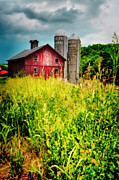 Abandoned Barn Prints - Red Delight Print by Emily Stauring