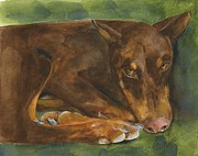 Doberman Art Posters - Red Doberman Watercolor Poster by Sheryl Heatherly Hawkins