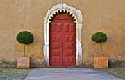 Queen City Framed Prints - Red Door of Caldas de Rainha Framed Print by David Letts