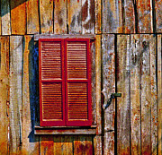 Cabin Wall Framed Prints - Red Door Framed Print by Vickie Hibler