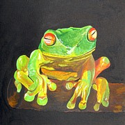 Red-eyed Tree Frog Painting Prints - Red Eyed Tree Frog Print by Tracey Harrington-Simpson