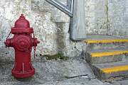 Fire Weed Prints - Red Fire Hydrant by the Staircase Print by JPLDesigns