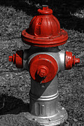 Red Fire Hydrant Print by Steven  Taylor