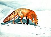 Genevieve Esson - Red Fox